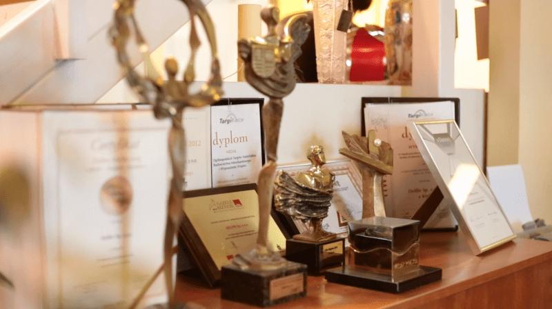Обслуживание сервис награды DELFIN